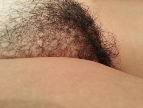 hairy pussy (2)